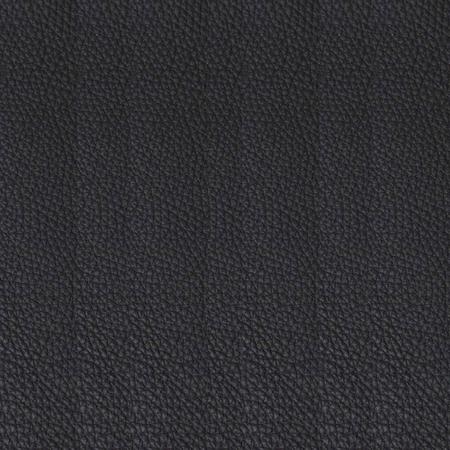 Sofa F40 Schwarz Tecta