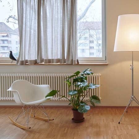Frida Verde Zimmerpflanze Der Stillvolle