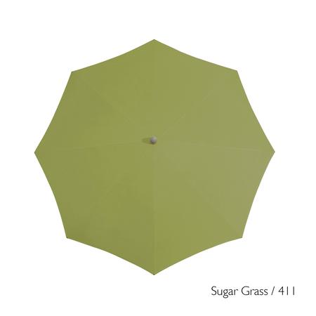 Glatz 411 sugargrass