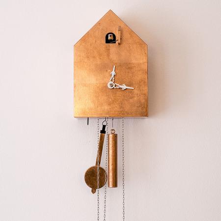 kuckucksuhr in neuem glanz. Black Bedroom Furniture Sets. Home Design Ideas