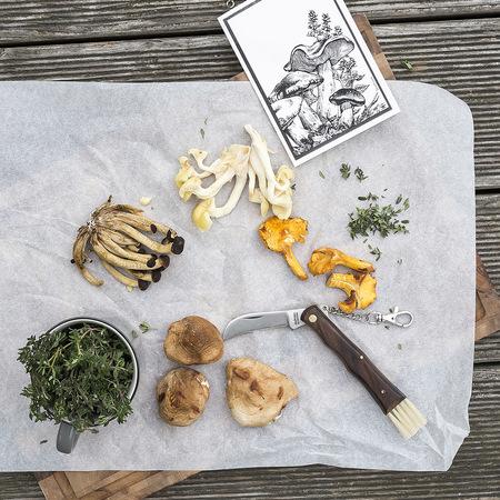Klötzli Messerschmiede 'Pilzmesser' Messer