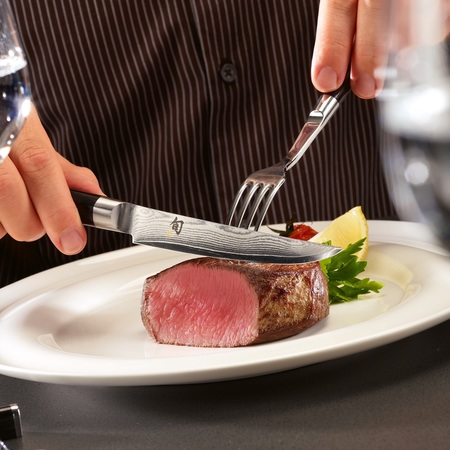 Kai steakmesser mood