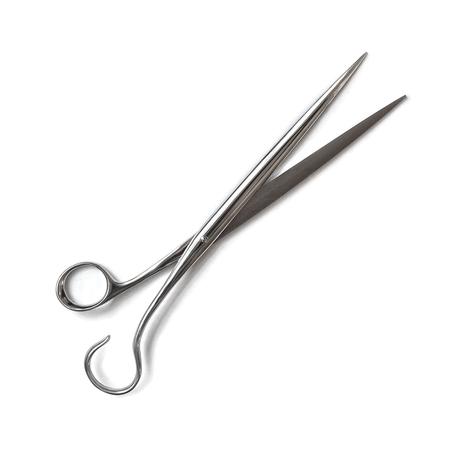 Campi scissors 1024x1024