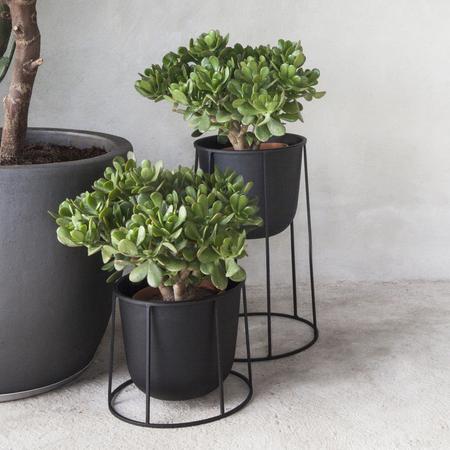Wire Pot Blumentopf Menu