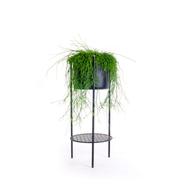 Alle Pflanzen fliegen hoch: Topf 'Ent'