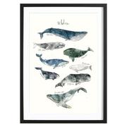 Wunderschöner Kunstprint mit Walen