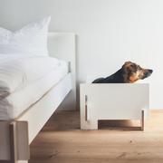 Hundebett 'Kläffer'