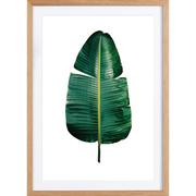 Bild 'Classic Botanical Leaves'