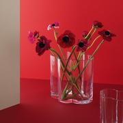 Vase 'Window'