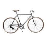 Unisex-Fahrrad 'Yiwu' in Chrom