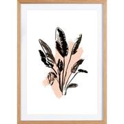 Bild 'Plants & Colours 2'