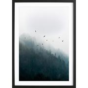 Bild 'Foggy Morning 4'