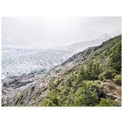 Fine-Art Print 'Ice Carpet'