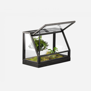 'Greenhouse Mini'