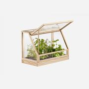 'Greenhouse Mini'
