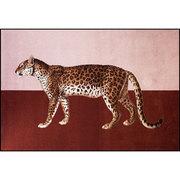 Animalischer Teppich 'Panthera 2'