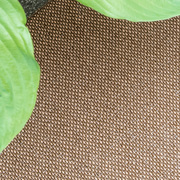 In- & Outdoor-Teppich 'Moor'