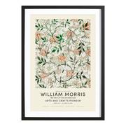 William Mooris-Print 'Jasmine Exhibition'