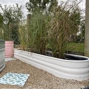 Ovaler niedriger Pflanzentrog von 'Tankkd'