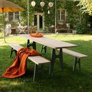 Tisch und Bank 'Ludwig'