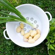 Gemüsesieb aus Emaille