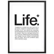 Bild 'Life*' gerahmt