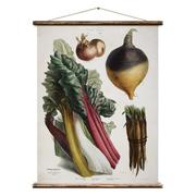 Vintage Poster mit Gemüse