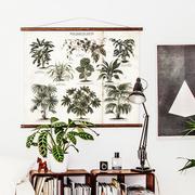 Foliage plants 02