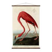 Tolle Vintage-Wandkarte 'Flamingo'