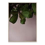 Poetisches Bild 'Green Leaves'