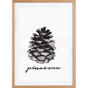 Bild 'Pinecone' gerahmt