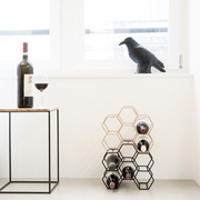 110217 00001 minimalistic home 1629
