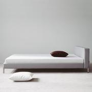 Lizard bed 1