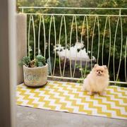 In & Outdoor Teppich 'Gunnel'