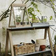 Dein eigenes Treibhaus für Zuhause