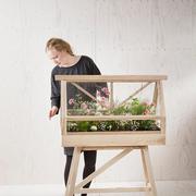 Schönes 'Greenhouse' für drinnen