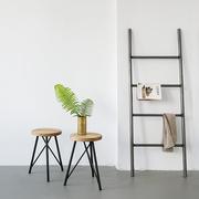 Ladder details