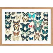 Kunstprint mit Schmetterlingen