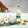 Alkoholfreier Gin Laori Juniper