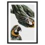 Juniqe Birds of Paradise mit Holzrahmen / 50 X 70 Schwarz