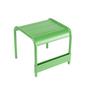 Luxembourg petite table basse vert prairie