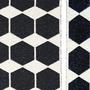 Plastic rug anna black zoom